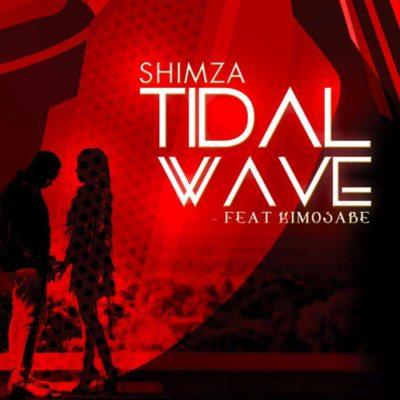 DJ Shimza – Tidal Wave ft. Kimosabe