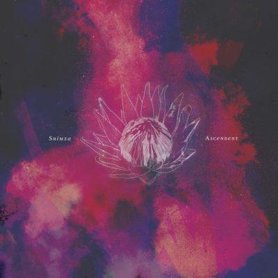DJ Shimza – Secret Melodies
