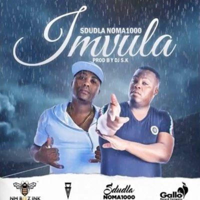 DOWNLOAD mp3: Sdudla Noma1000 - Imvula ft  DJ SK