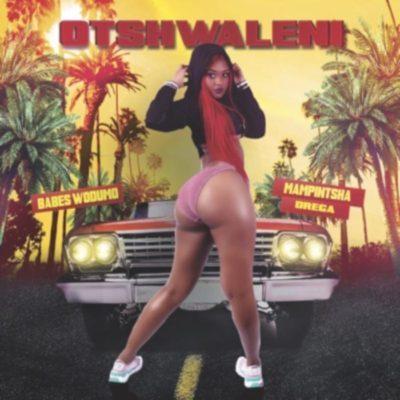 Babes Wodumo - Otshwaleni ft. Mampintsha & Drega