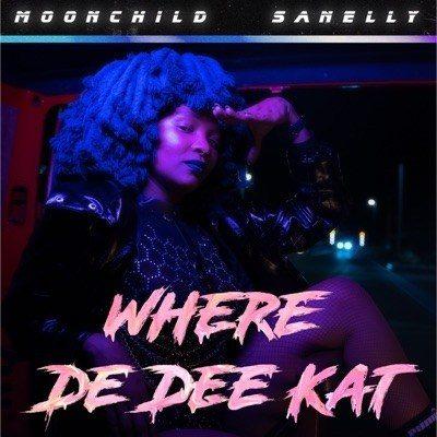 Mp3 Download: Moonchild Sanelly - Where De Dee Kat