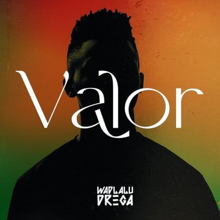 Wadlalu Drega – Feature yeMistake ft. Mampintsha