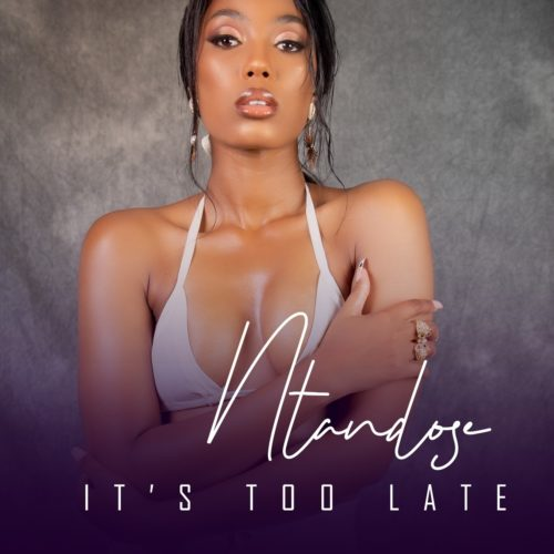 Ntandose - It's Too Late ft. Liza Miro