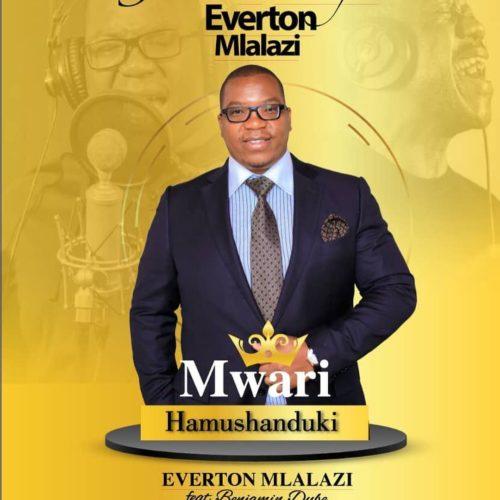 Everton Mlalazi - Mwari Hamushanduki ft. Benjamin Dube