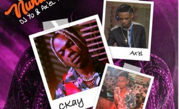 Ckay - Love Nwantiti (Remix) ft. DJ Yo! & AX'EL